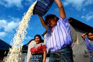 Women workers in panabaj solola guatemala
