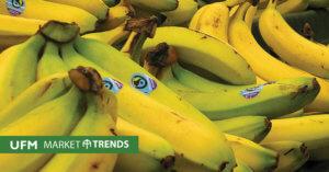 banana-mt